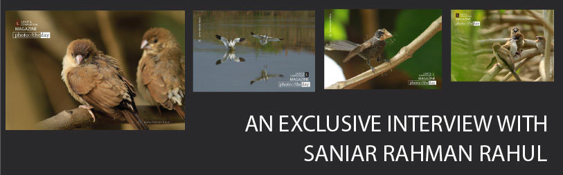 An Exclusive Interview with Saniar Rahman Rahul