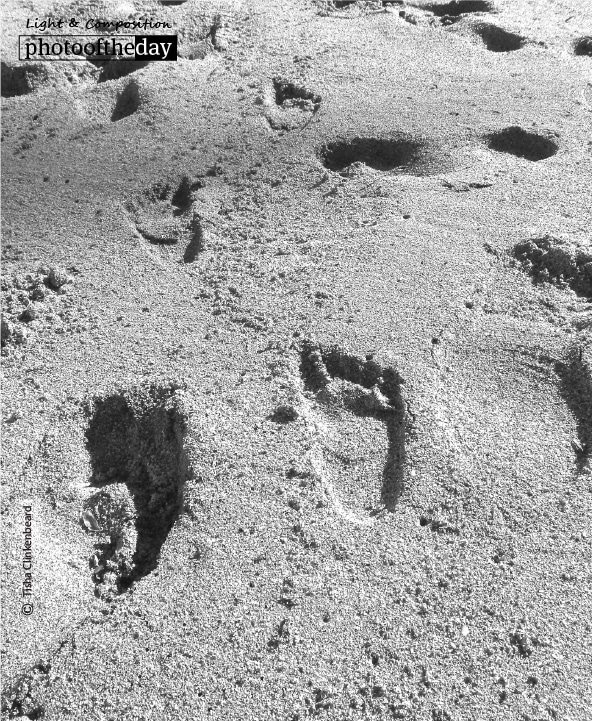 Footprints in the Sand, by Tisha Clinkenbeard