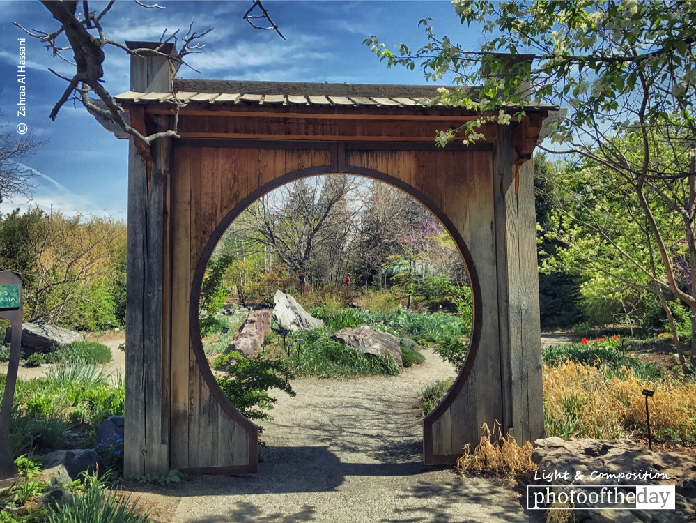 Denver Botanic Gardens, by Zahraa Al Hassani
