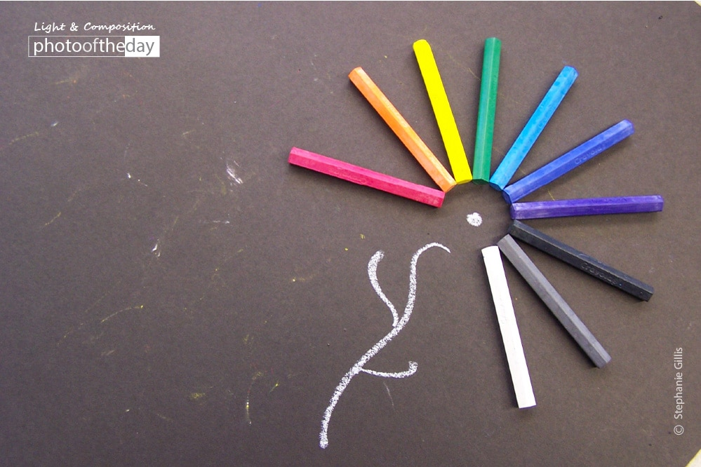 Chalk Flower, by Stephanie Gillisl