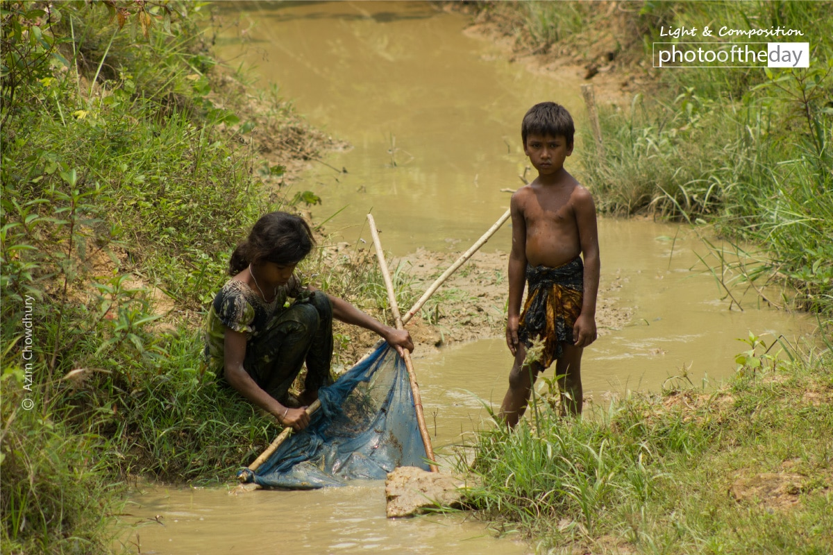 Fishing in the Forest, by Rahat Azim Chowdhury