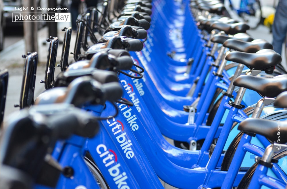 Citi Bikes, by Des Brownlie