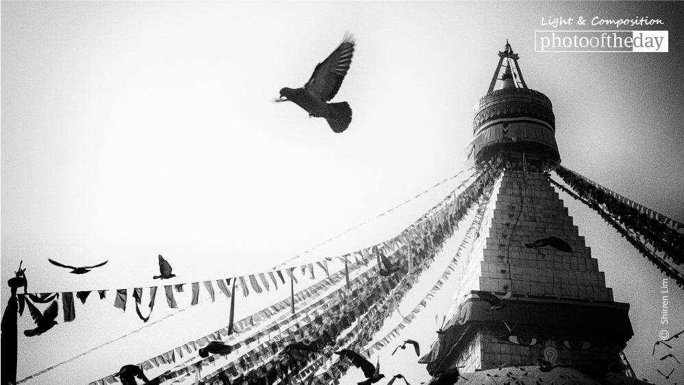 Boudhanath, by Shirren Lim
