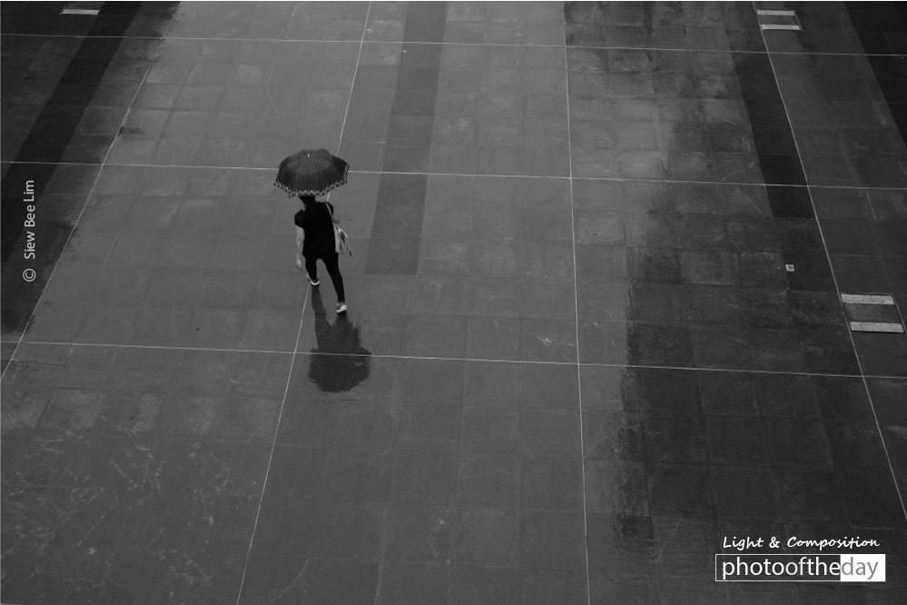 A Beautiful Umbrella, by Siew Bee Lim