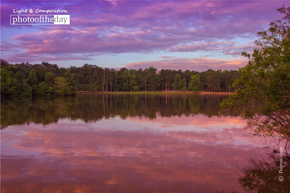 The Pink and Purple Sunrise, by Thomas Vasas
