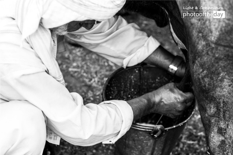 Milkman, by Jabbar Jamil