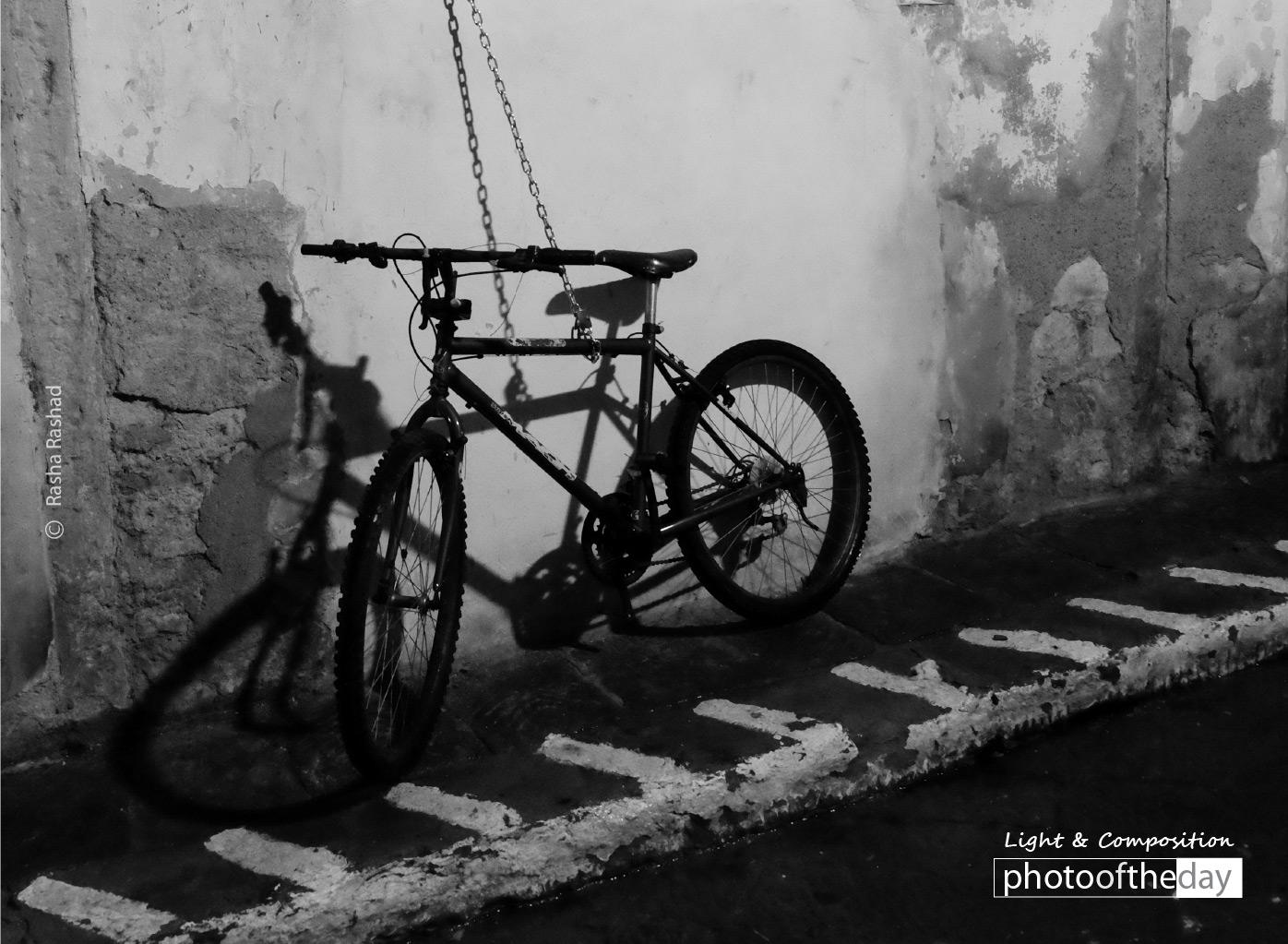 Bike Shade, by Rasha Rashad