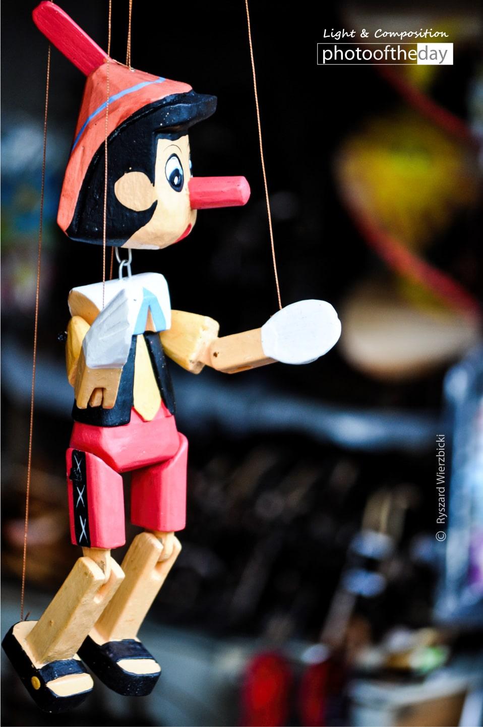 Pinokio Puppet by Ryszard Wierzbicki