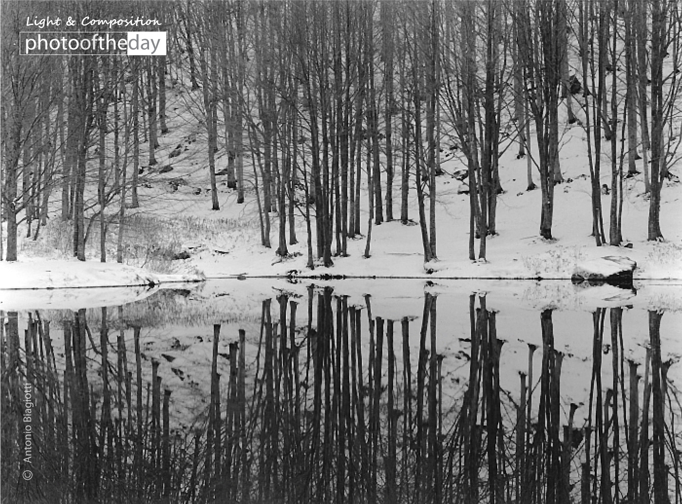 Reflections by Antonio Biagiotti