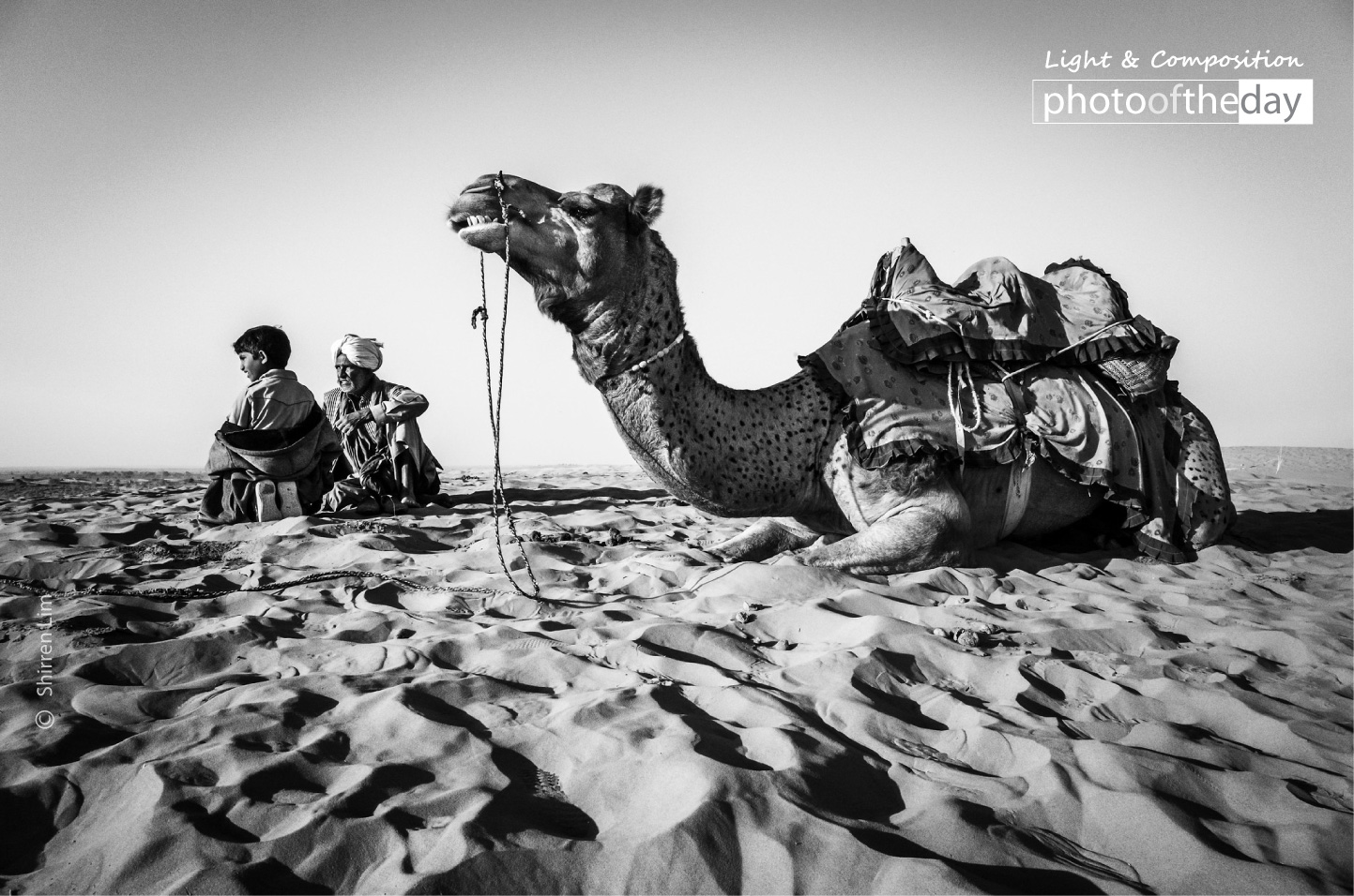 A Man, a Boy, and a Camel by Shirren Lim