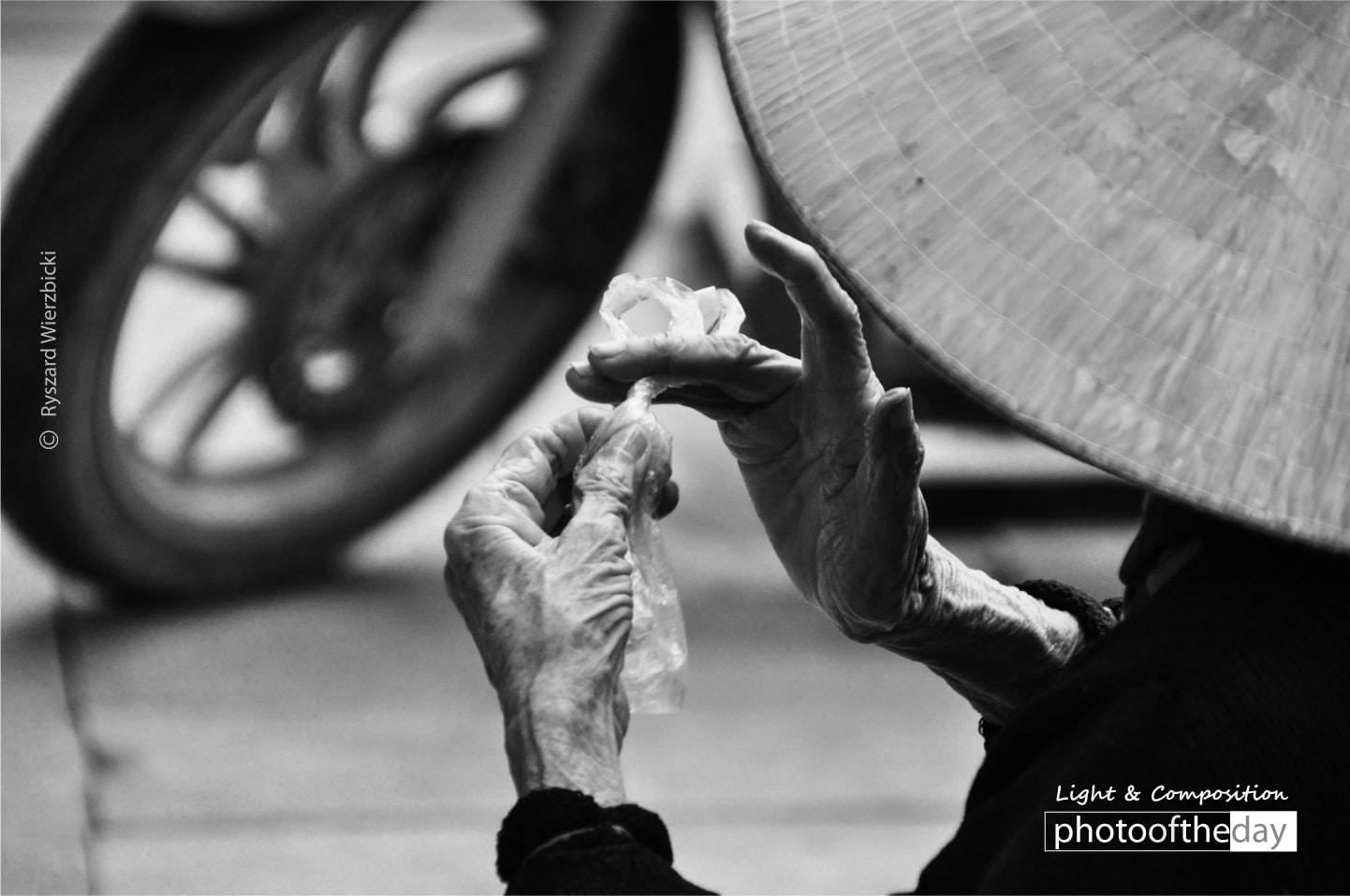 Old Hands by Ryszard Wierzbicki