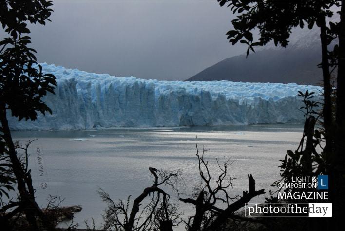 Perito Moreno Glacier, by Nilla Palmer