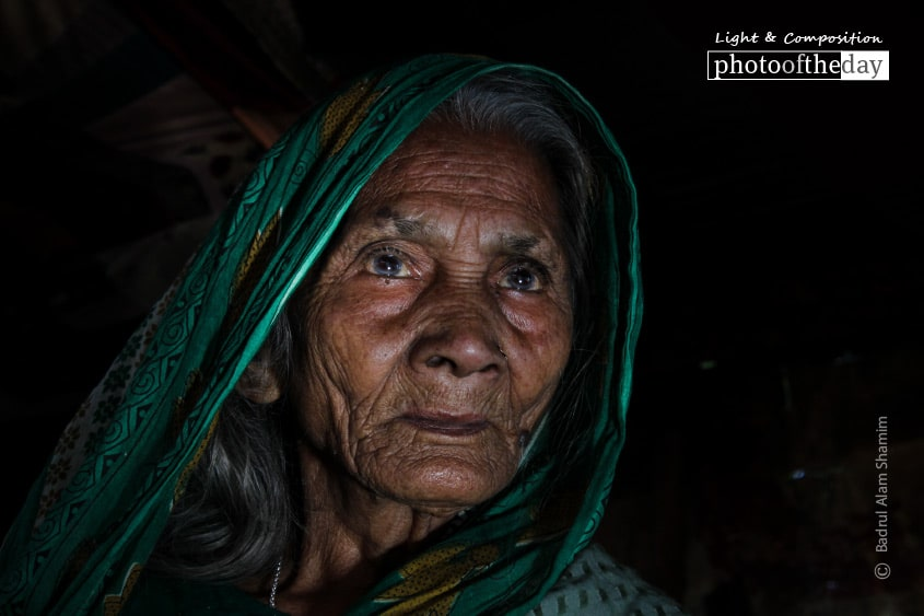 Portrait of An Old Lady, by Badrul Alam Shamim