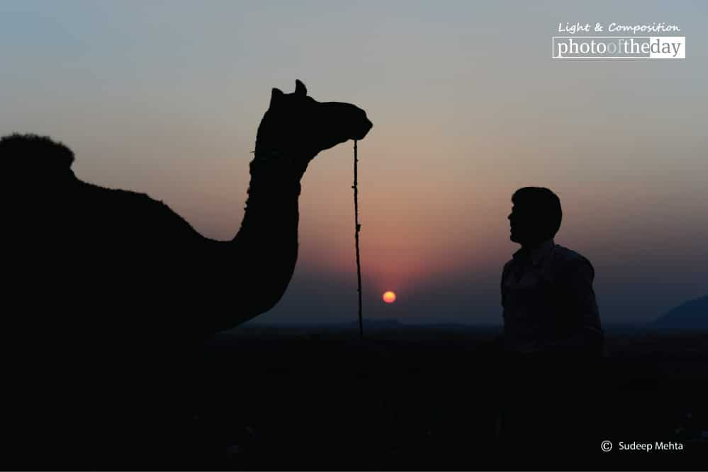 The Nomadic Silhouette, by Sudeep Mehta