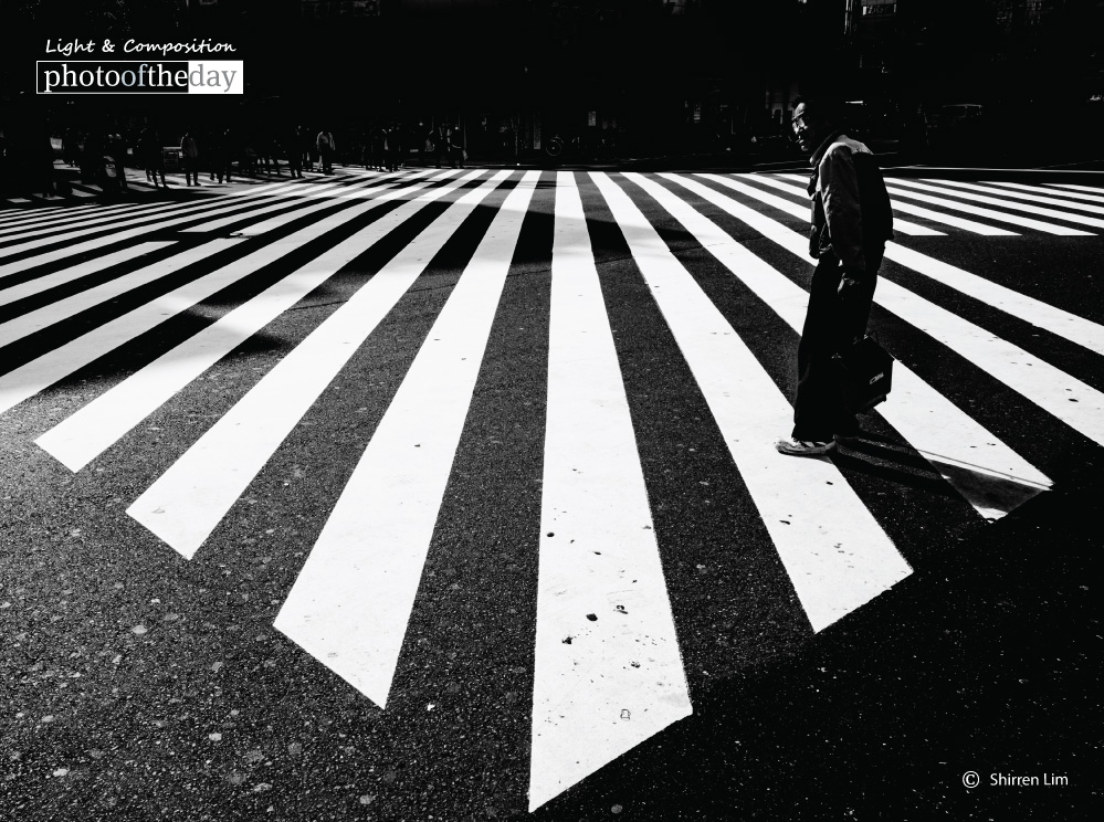 At the Crossroads, by Shirren Lim