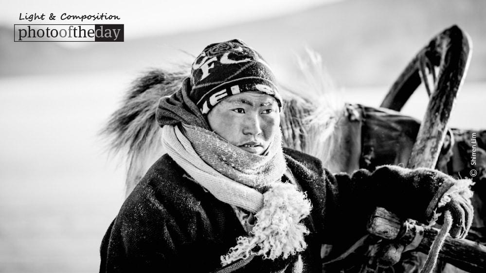 Horse Sleigh Rider, by Shirren Lim