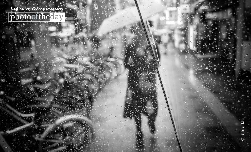 Backslash, by Shirren Lim