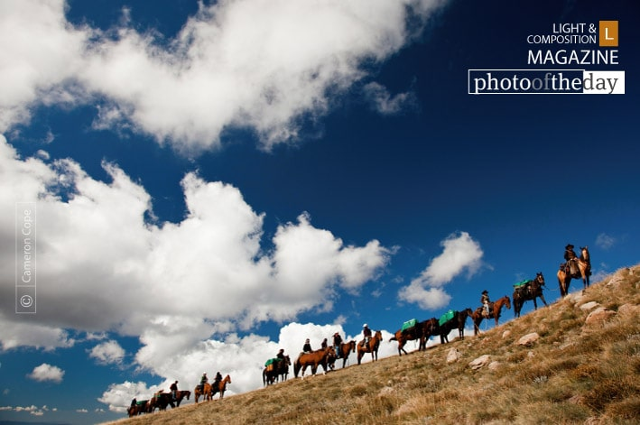 Bogong Horseback Adventure, by Cameron Cope