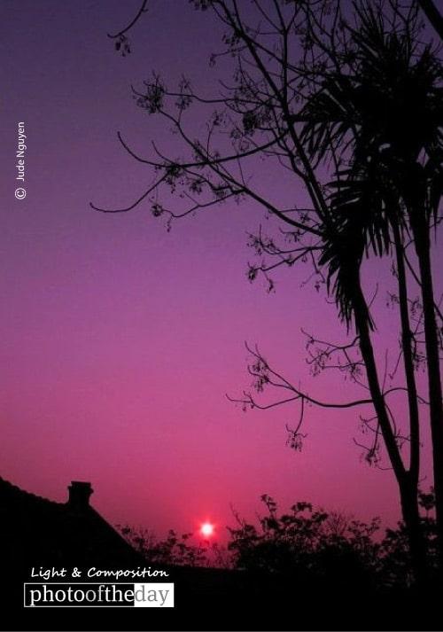 Purple Sunset, by Jude Nguyen