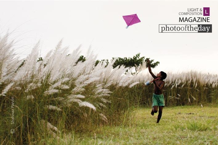 The Kite Runner, by Shahnaz Parvin
