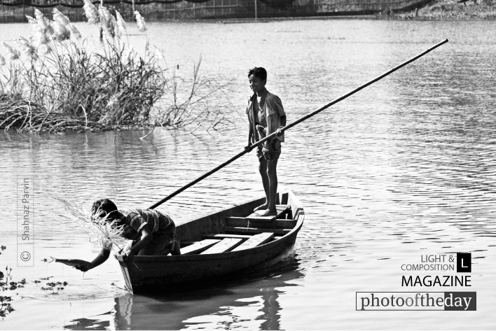 Fisher Boys, by Shahnaz Parvin
