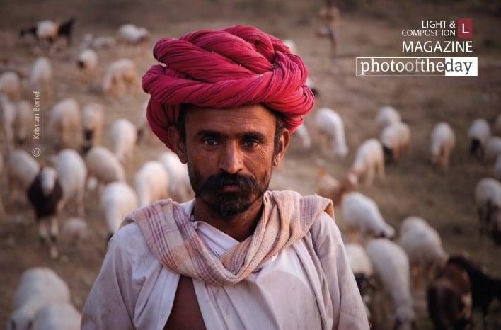 Ranakpur Shepherd, by Kristian Bertel