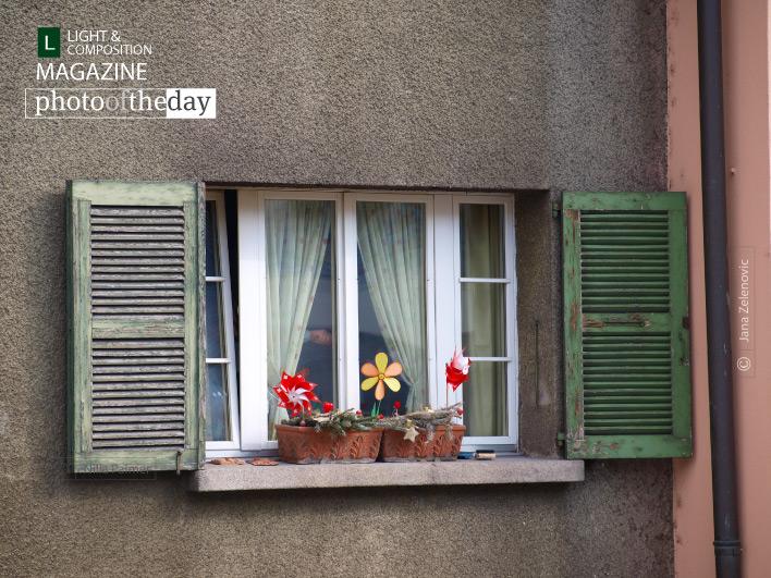 It must be Spring, by Jana Z