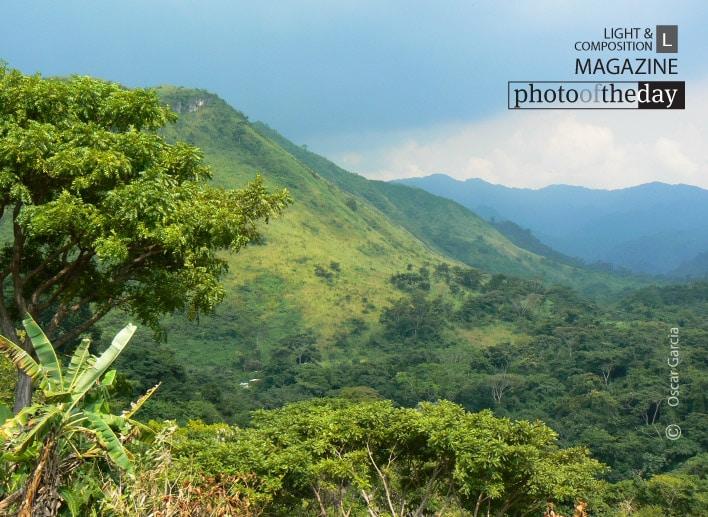 Green Venezuela, by Oscar Garcia