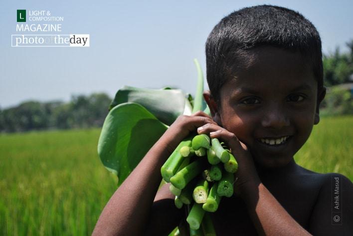 Charming Little Boy, by Ashik Masud