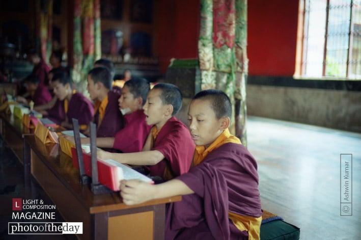 Monks in Training, by Ashwin Kumar
