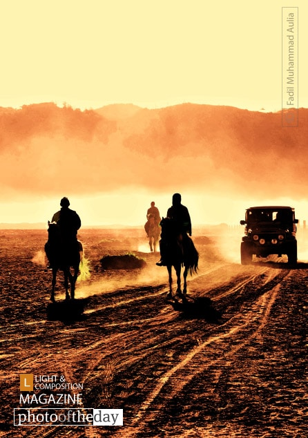 Horse Power, by Fadil Muhammad Aulia