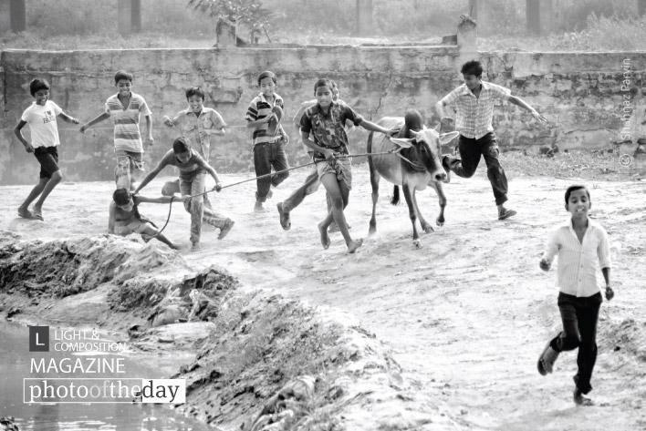 Seasonal Cowboys, by Shahnaz Parvin