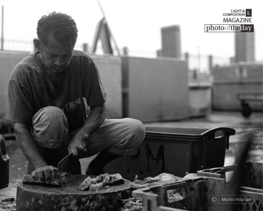 Morning Wet Fish Market, by Morris Hilarian