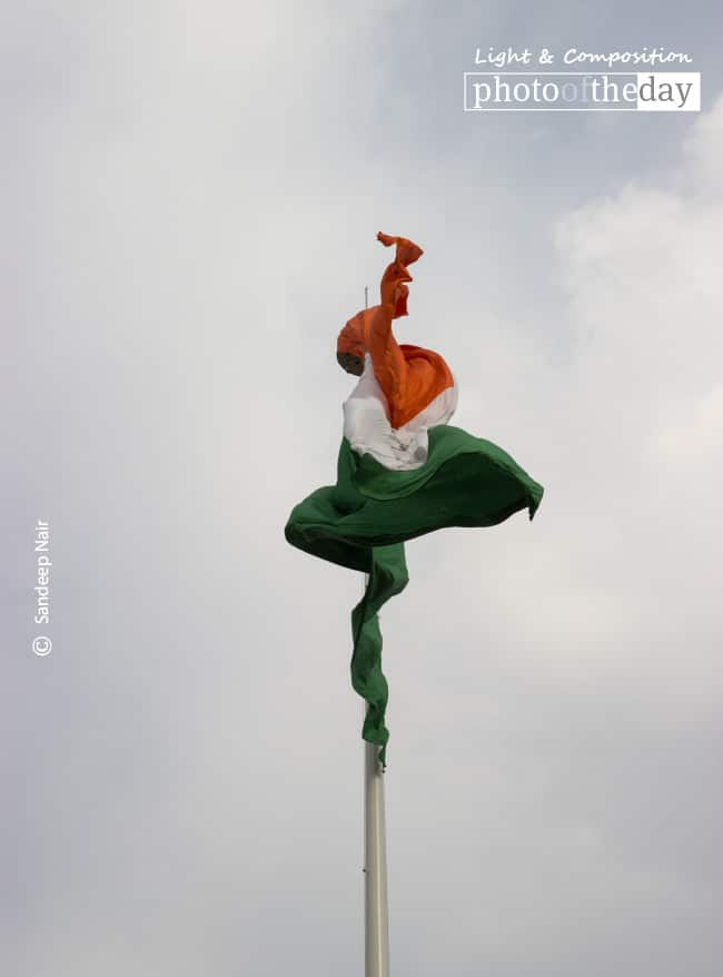 The Dancing Beauty, by Sandeep Nair