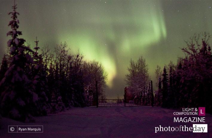 Aurora Borealis, by Ryan Marquis