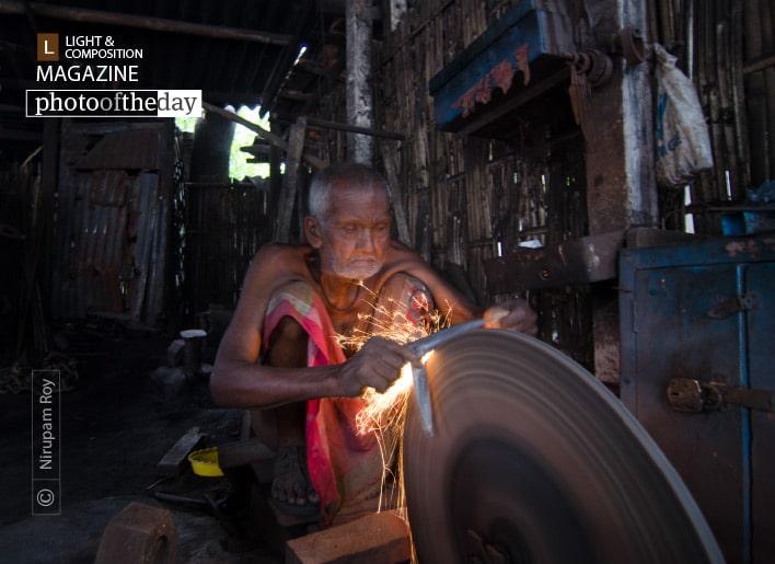 Life Long, by Nirupam Roy