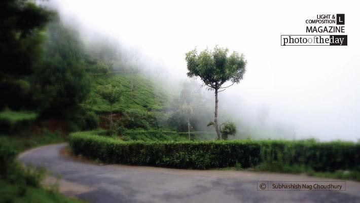 The Way to the Heaven, by Subhashish Nag Choudhury