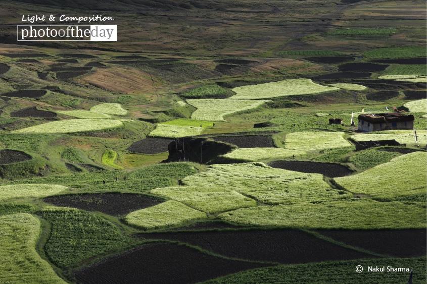 Langza Village, by Nakul Sharma