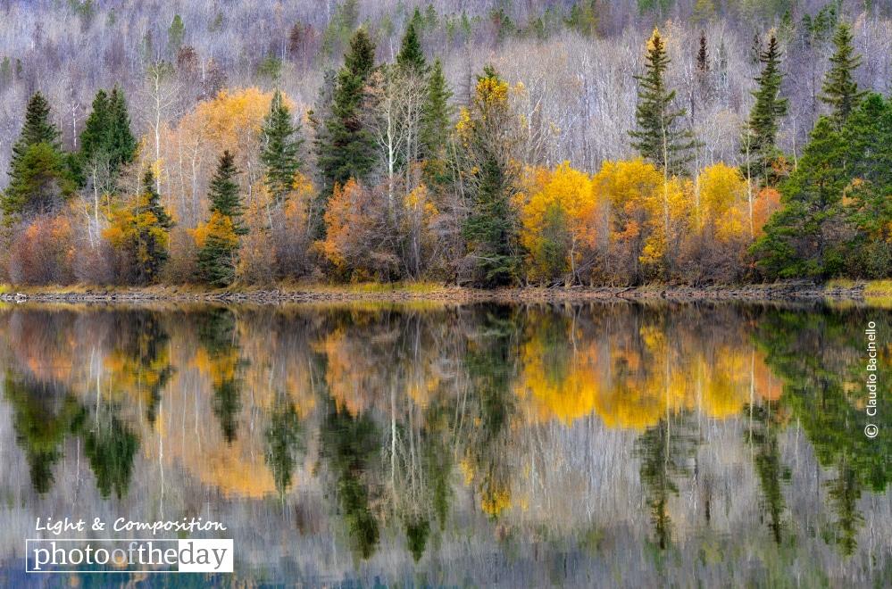 Chilko Lake Reflection, by Claudio Bacinello
