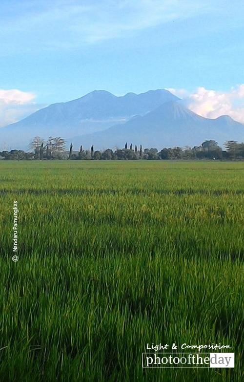 Tanah Airku Indonesia, by Nandaru Pamungkas