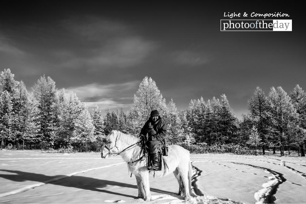 Mongolian Horseman, by Shirren Lim