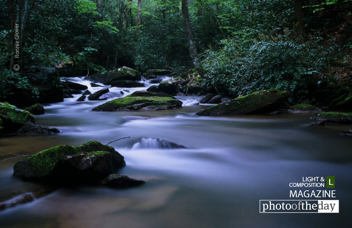 Mountain Stream, by Ronnie Glover