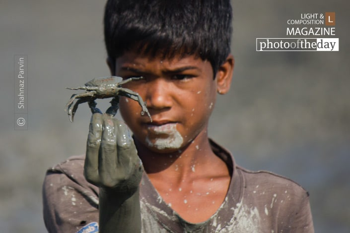 The Boy with Crab, by Shahnaz Parvin