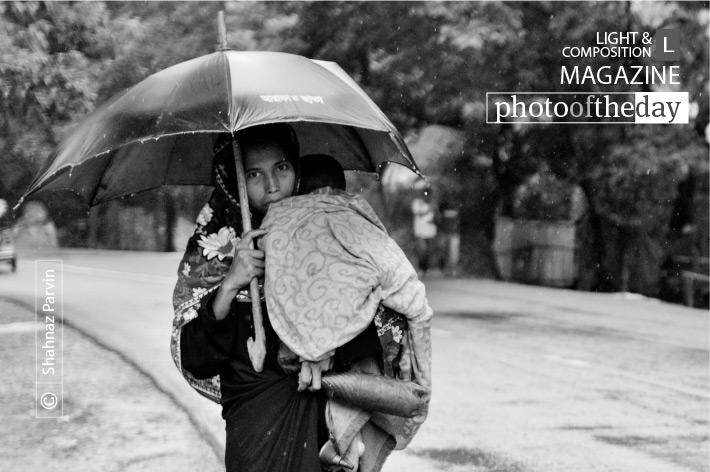 The Mother and the Rain, by Shahnaz Parvin
