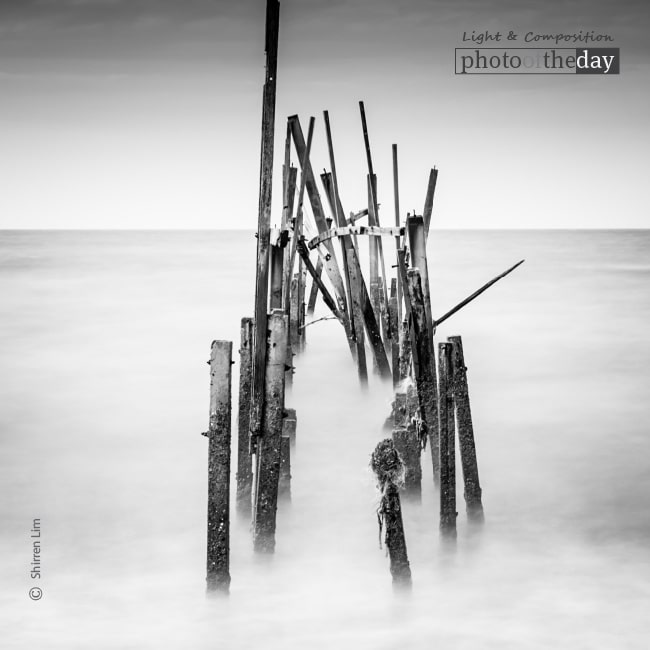 Sticks and Stones, by Shirren Lim