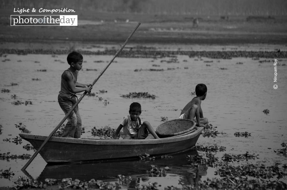 Playful Boys, by Nirupam Roy