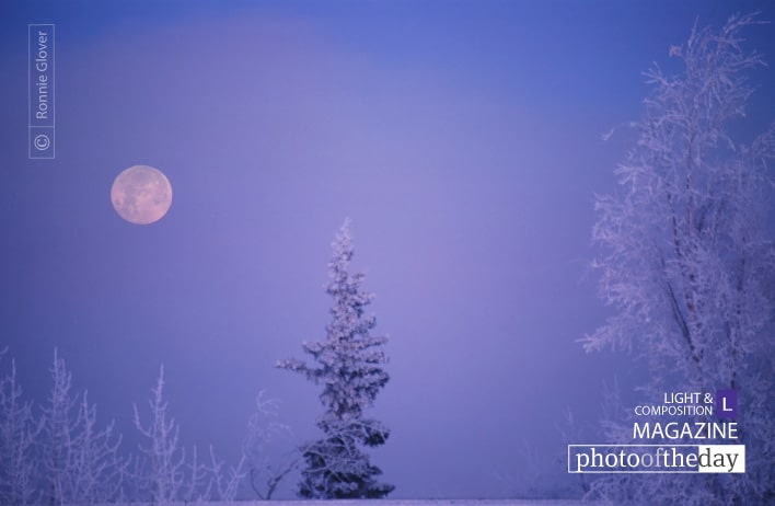Frosty Moon, by Ronnie Glover
