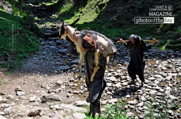n Old Shepherd, by Lothar Seifert