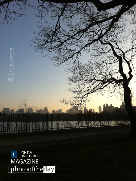 Sunset in Central Park, by Patricia Saraiva