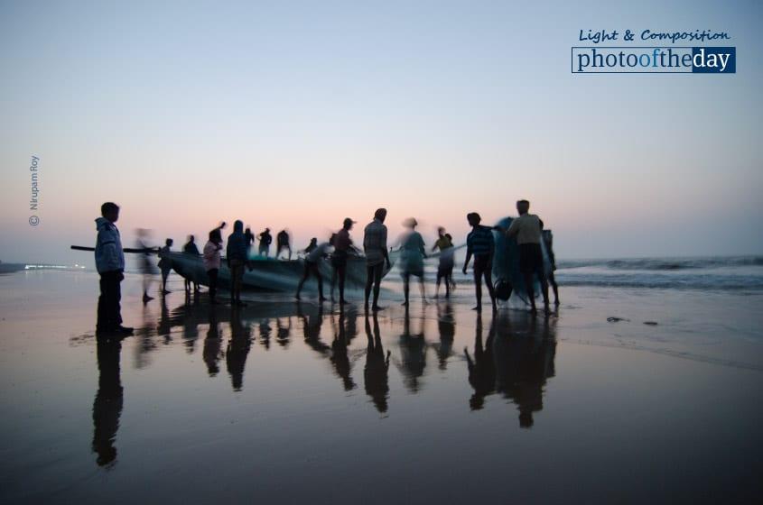 Preparation for Next Sareen, by Nirupam Roy